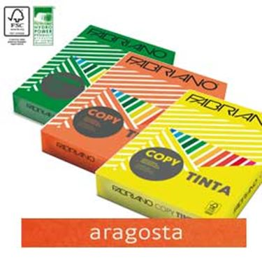 Picture of Carta copy tinta A3 80gr 250fg col.forti aragosta